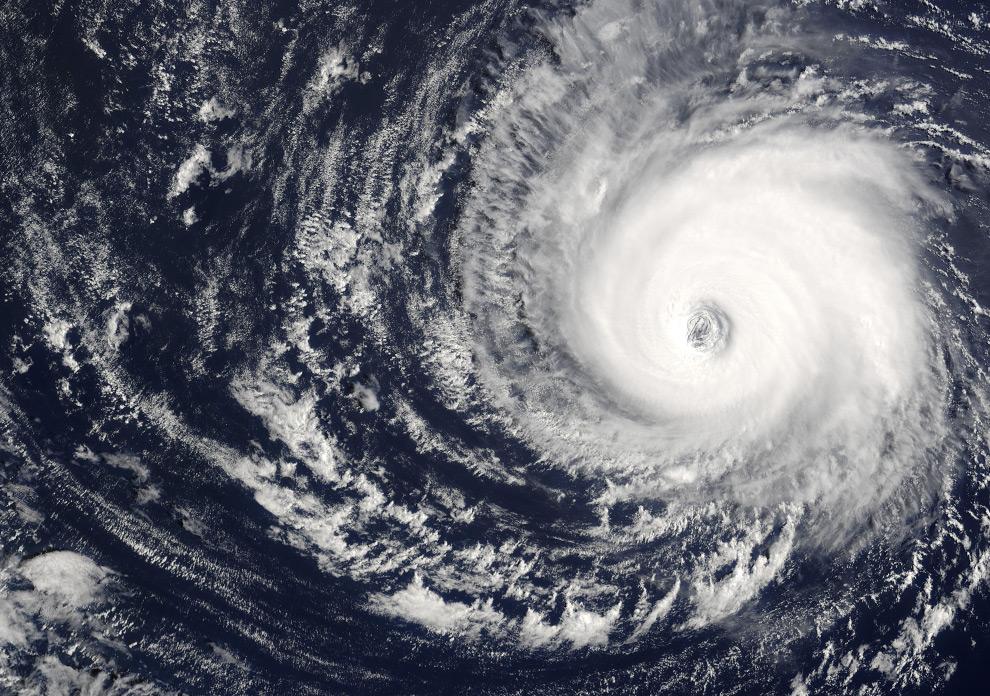 Иегуда Ерушалми: Из глаза тайфуна. О трех волнах Зеленого джихада (продолжение)