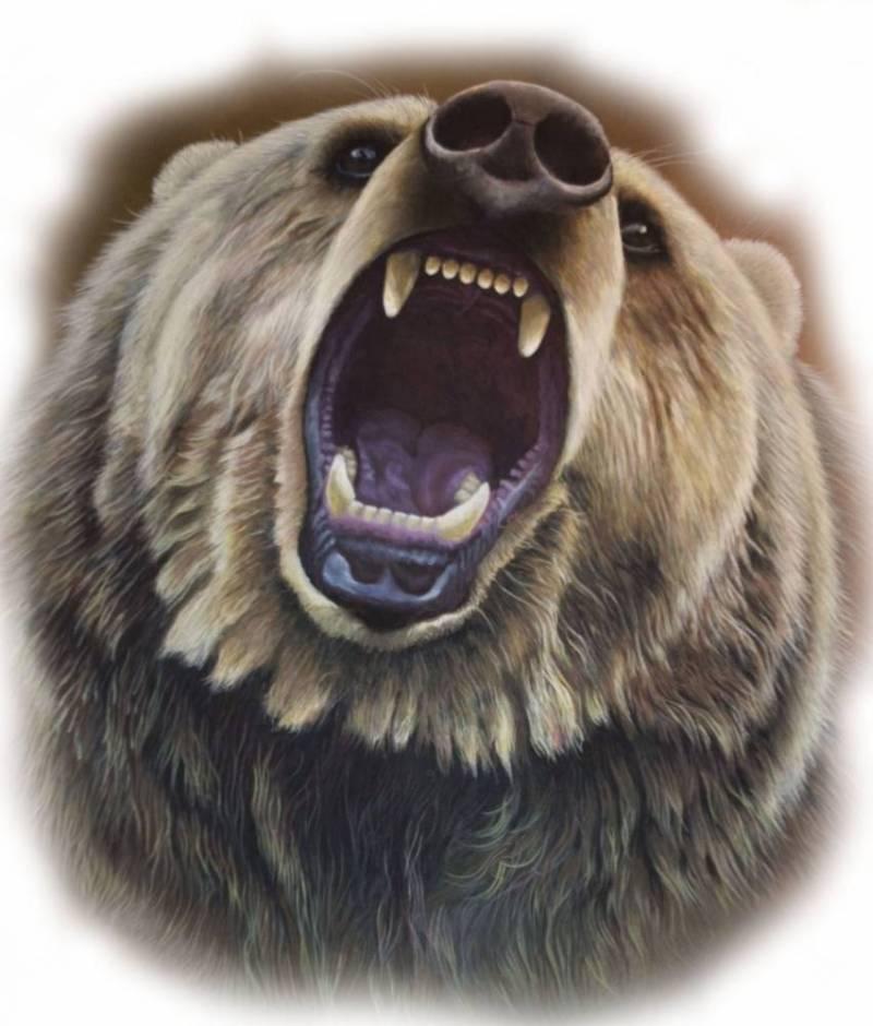 Семён Талейсник: Медведи на картинах художников