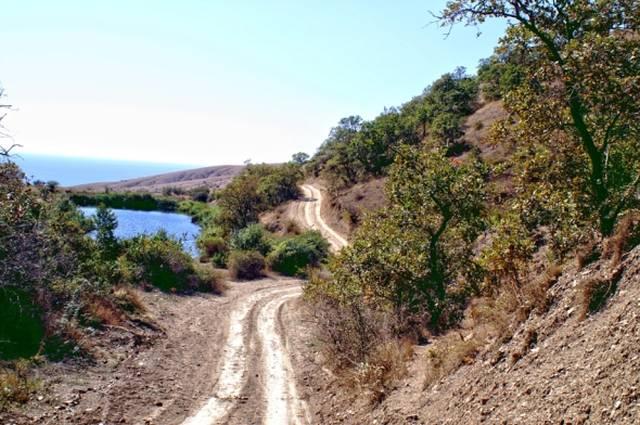 Дорога в Лисью бухту