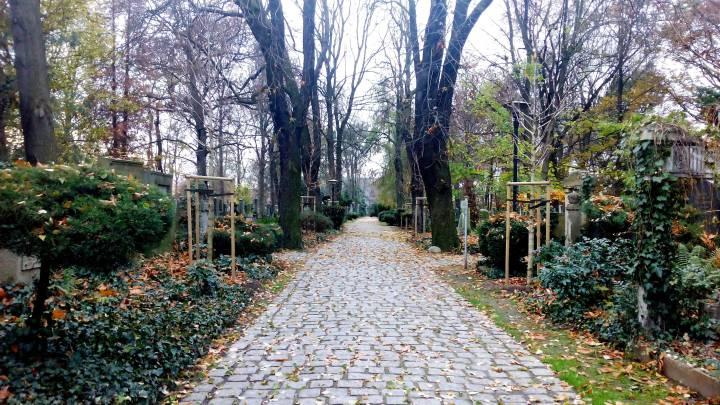 Анатолий Матвиенко: Еврейское кладбище во Вроцлаве. Здесь покоятся ограбленные люди