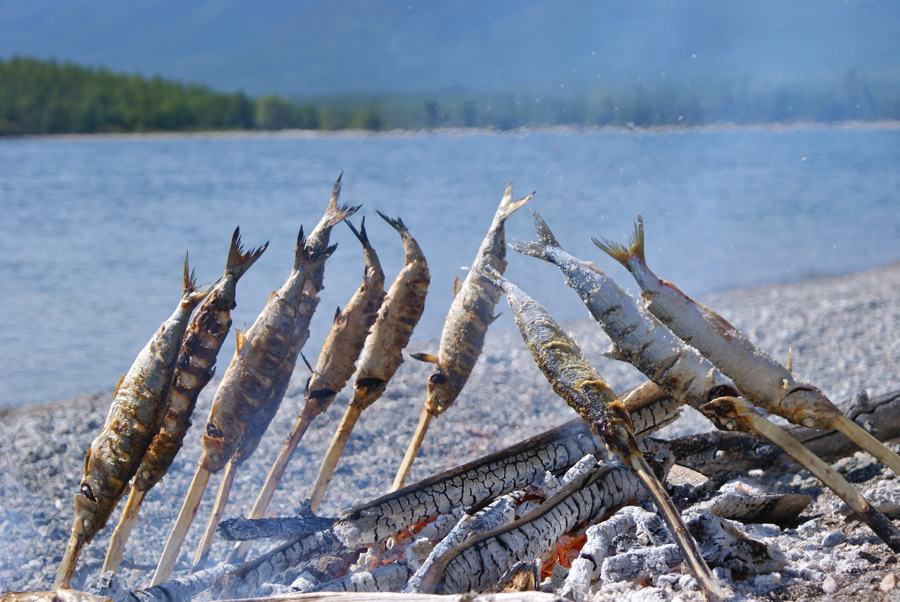 Байкальский омуль печёный на рожнах