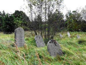 Видзы. Еврейское кладбище, август 2016 г. Фото Л. Смиловицкого